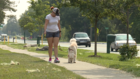 How dog walkers keeping metro Detroit safe