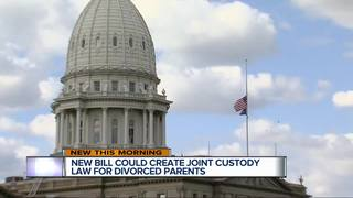 Bill could create joint custody law for parents