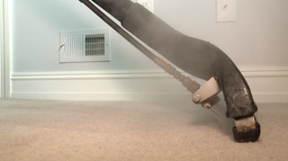 Carpet cleaning company gets