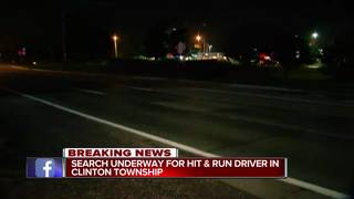 Driver turns self in for deadly hit-and-run