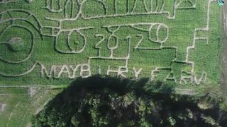 Best corn mazes in Metro Detroit