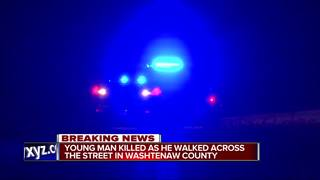 Young person hit and killed walking in street