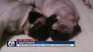 Eastpointe residents worry dogs being poisoned