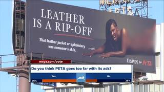 Graphic PETA billboard angers some in Detroit
