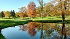 Send & view photos: Fall colors in metro Detroit