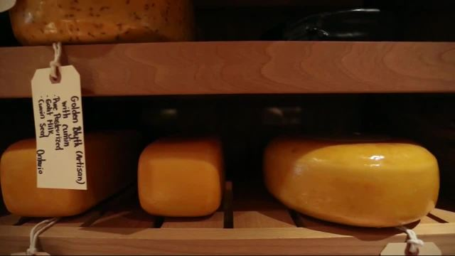 Eating cheese every day may be good for you