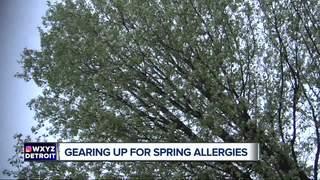 Start preparing for spring allergies now