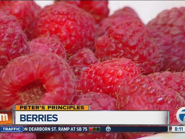 Peter's Principles, Berries