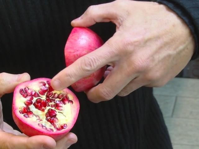 Peter's Principles, Pomegranate health benefits
