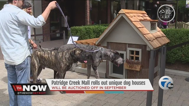 Unique Dog Houses Being Auctioned Off At Partridge Creek Mall