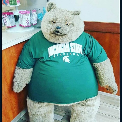 Cold stone creamery teddy bear mascot stolen in greektown returned cold stone creamery teddy bear mascot stolen in greektown returned theft caught on surveillance altavistaventures Images