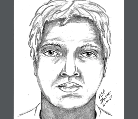 Sketch released after series of arsons