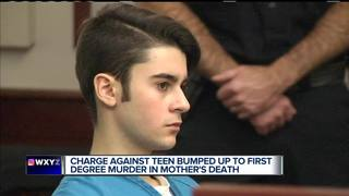 Teen accused of smothering mother