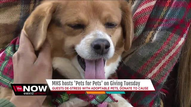 Michigan Humane Society Offers Pets For Pets On Giving