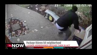 Homeowner catches package thief in the act