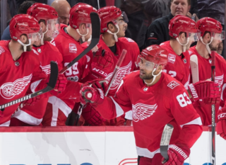 Red Wings beat Maple Leafs for much needed win