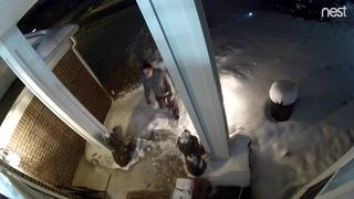 Woman caught on camera stealing package