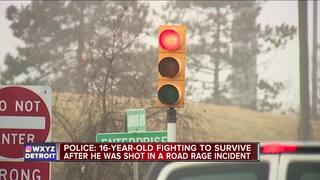 Teen shot in Allen Park road rage incident
