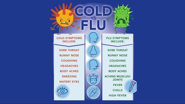 flu symptoms versus cold symptoms wxyz com