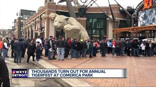 Tigers fans out in droves for TigerFest