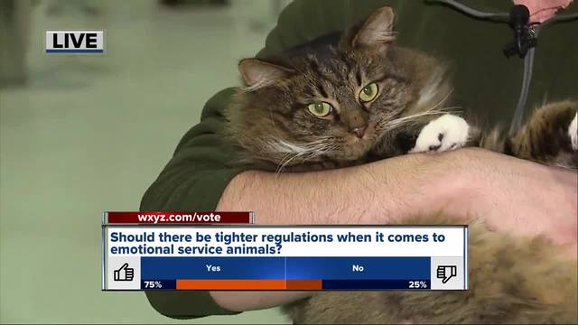 Wash. woman disagrees with airlines' emotional support animal policy
