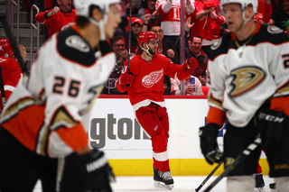 Larkin, Nielsen score as Red Wings beat Ducks