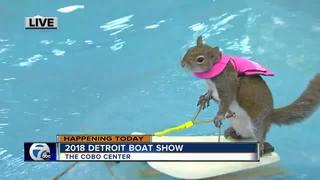 2018 Detroit Boat Show