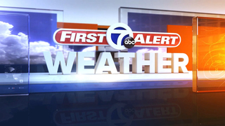 Wind advisory issued for southeast Michigan