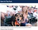 'Bark at the Park' returns for 2 Tigers games