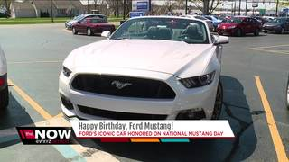 Celebrate National Mustang Day 2018