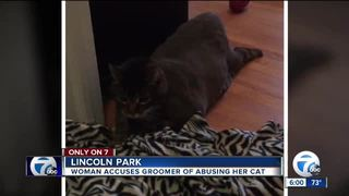 Woman suspects cat was abused at groomer