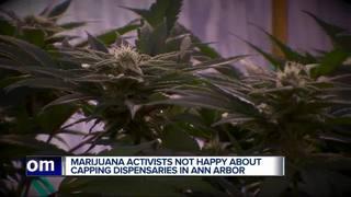 More medical marijuana dispensaries in Ann Arbor