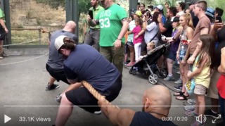 Wrestlers play tug of war with lion at zoo
