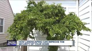Protecting your home with landscaping