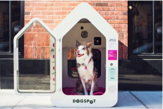 Air-conditioned dog houses outside restaurants