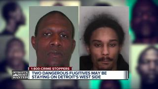 Detroit's Most Wanted: Davis and Nelson