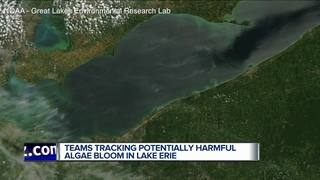 Inside NOAA's tracking of Lake Erie's algae