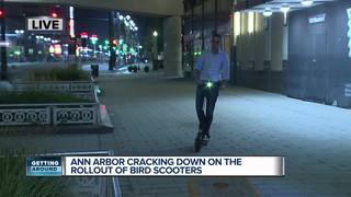 Controversy around Bird scooters in Ann Arbor
