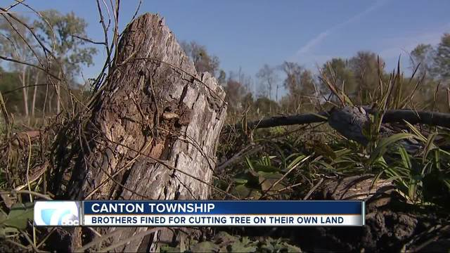 Brothers told to pay about -450k for taking down trees in Canton Township