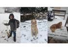 Send & view pics: 1st snowfall in metro Detroit