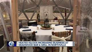 Metro Detroit restaurants offer igloo dining